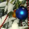 Новогодняя пора
